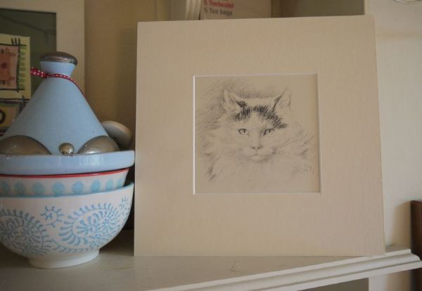 Cat's head - Cat D14 - 1940's print by Lucy Dawson
